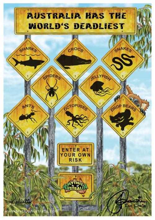 Drop Bears, Australlias Deadliest