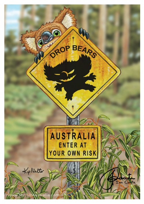 Drop Bear Warning sign