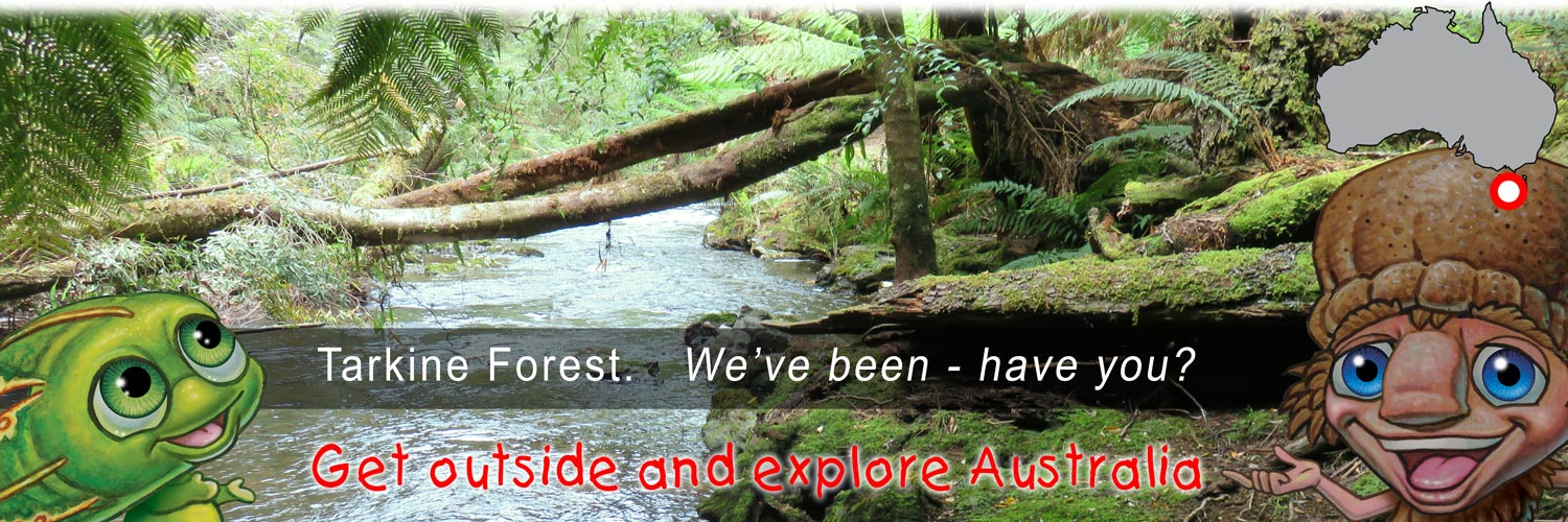 Mythic Australia, Tarkine Forest
